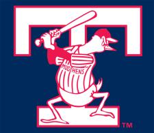 Toledo Mud Hens Baseball Wiki