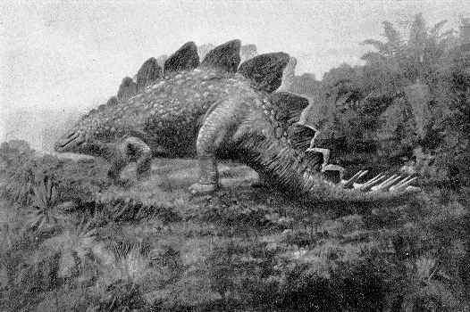 Stegosaurus - King Kong Wiki