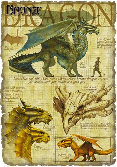 Bronze dragon - The Forgotten Realms Wiki - Books, races ...