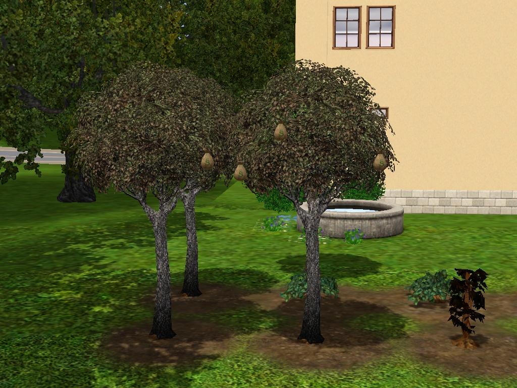 Simcity 4 Cheats Money Tree
