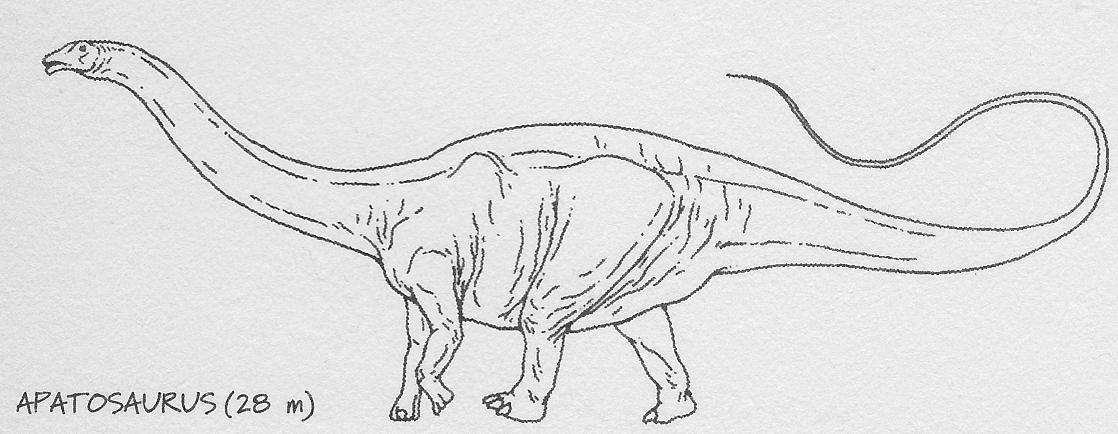 Apatosaurus - Park Pedia - Jurassic Park, Dinosaurs ...