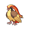 Pidgeot NB