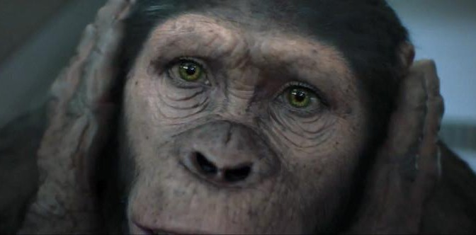 Cornelia - Planet of the Apes: The Sacred Scrolls