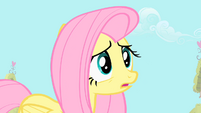 "Fluttershy ""maybe Spike feels threatened"" S1E24"
