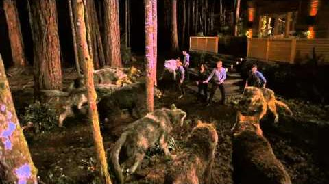 NEW Breaking Dawn TV spot