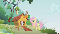 Fluttershy don't eat too fast S01E07