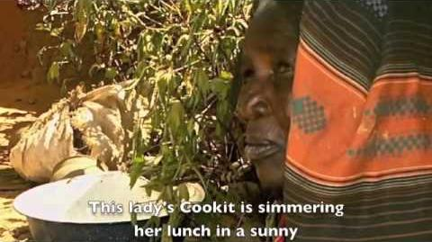 Cooking Traditional African Cornmeal in a Solar Cooker (Filmed in Chad in 2009)