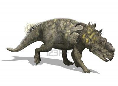 pachyrhinosaurus  File:10961627-the-pachyrhinosaurus-a-dino...
