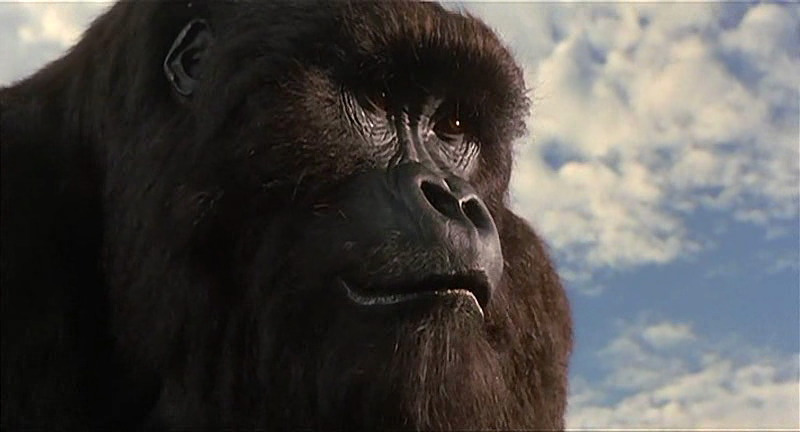 mighty joe young character disney wiki