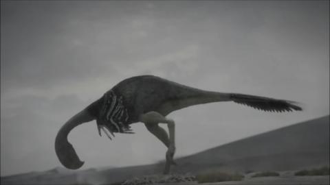 Pictures of Gigantoraptor - Planet Dinosaur Wiki