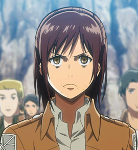 the military police the survey corps and