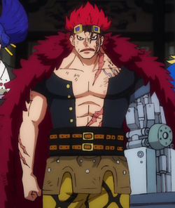 Eustass Kid Anime Post Timeskip Infobox