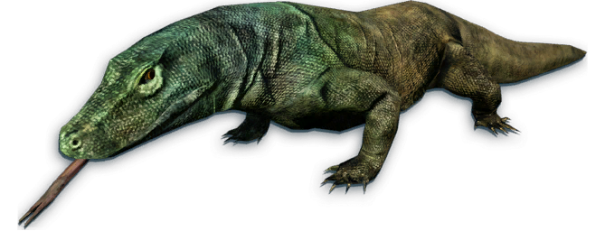 Komodo Dragon - Far Cry Wiki