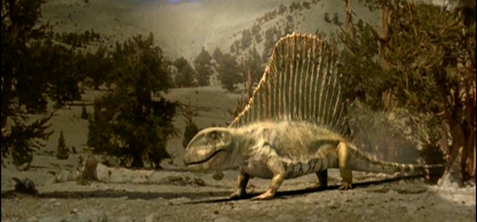 dimetrodon walking with wikis the free walking with