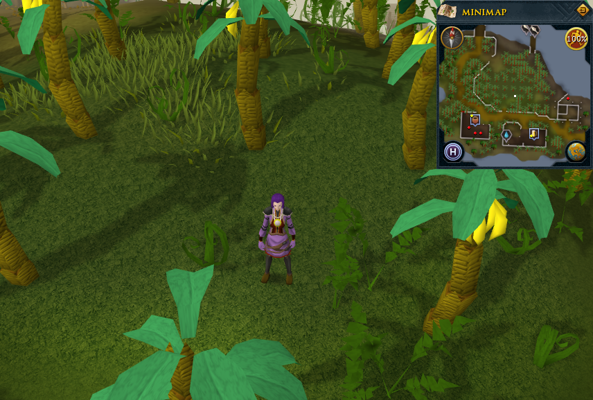 Fastest Way To Get To Fairy Ring Runescape