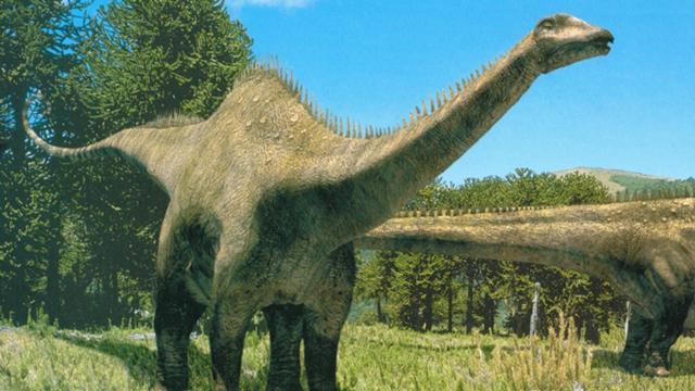 Diplodocus - Dinopedia - the free dinosaur encyclopedia
